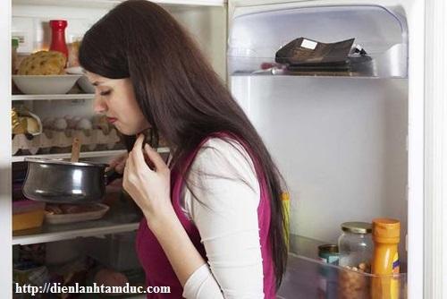 Tủ lạnh bốc mùi hôi nguyên nhân và cách xử lý